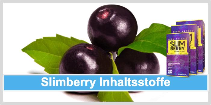 Slimberry Inhaltsstoffe Wirkstoffe