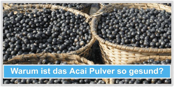 Warum ist das Acai Pulver so gesund Abbild
