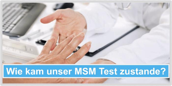 Wie kam unser MSM Test zustande Abbild