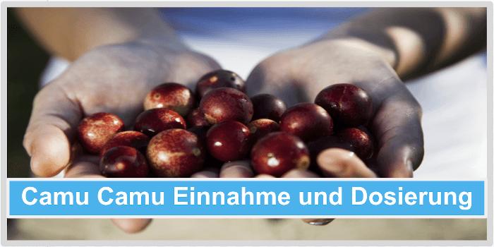 Camu Camu Einnahme und Dosierung Abbild