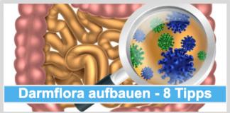 Darmflora aufbauen Titelbild