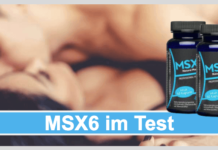 MSX6 Titelbild