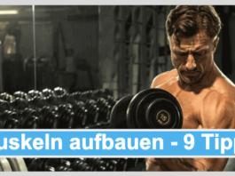 Muskeln aufbauen Titelbild