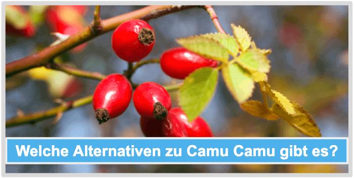 Camu Camu Alternativen